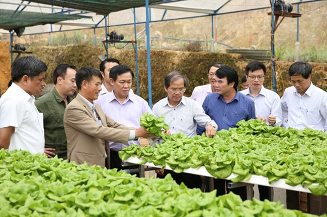 Phát triển nông nghiệp thông minh là xu hướng tất yếu