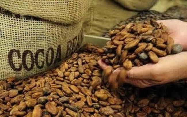 Tiếp tục nhập khẩu một số mặt hàng nông sản từ Ấn Độ từ hôm nay
