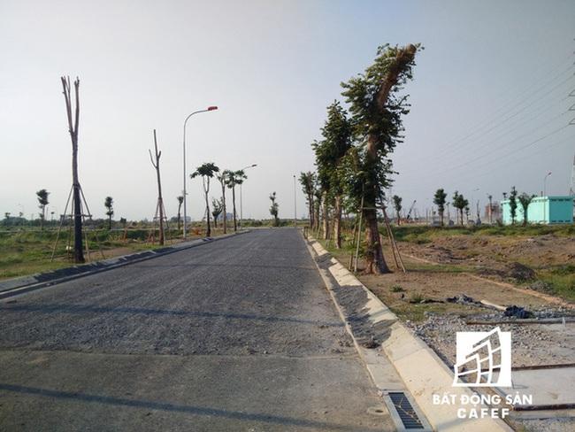 Cơn sốt đất nền tại Tp.HCM đang có dấu hiệu hạ nhiệt