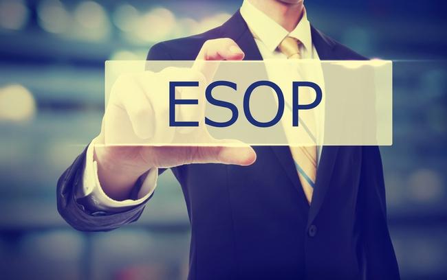 Masan Group chuẩn bị phát hành lượng cổ phiếu ESOP trị giá hơn 420 tỷ đồng