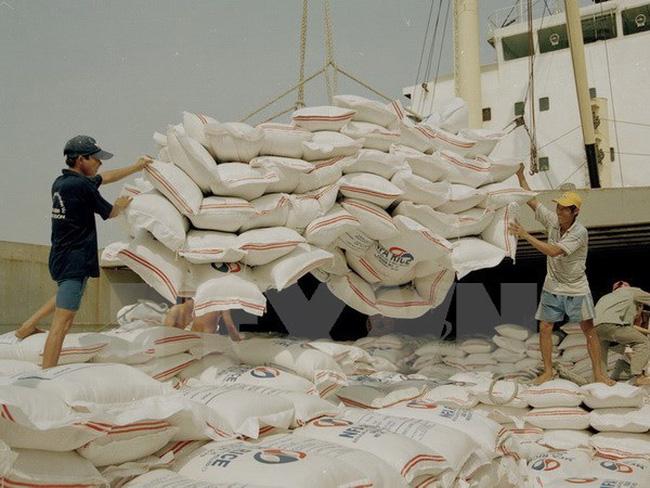 6 tháng đầu năm: Xuất khẩu gạo Japonica tăng gần 300% so với cùng kỳ