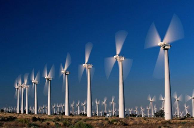 REE có thêm một công ty liên kết trong lĩnh vực điện gió