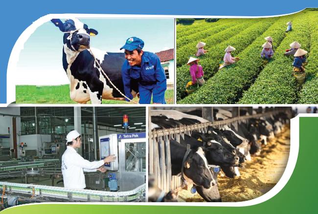 GTNfoods dốc toàn lực đầu tư mạnh vào Sữa tươi sạch và Trà