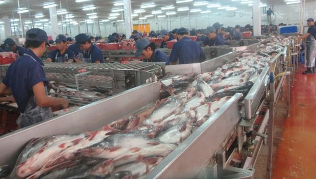 Công ty cổ phần Nam Việt:  9 tháng lãi ròng gấp 8 lần so với cùng kỳ