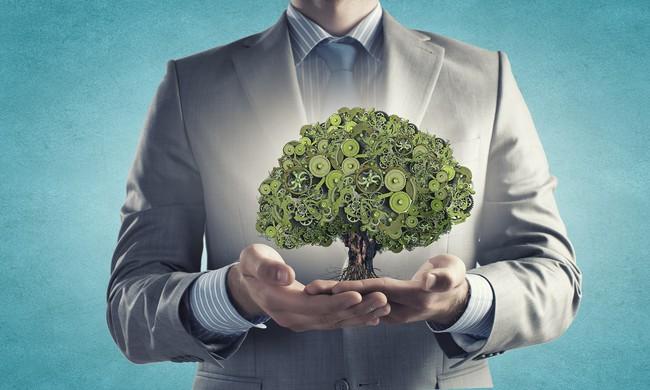 Doanh nhân thành đạt quản lý tài sản như thế nào?