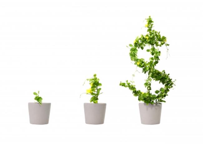 Đầu tư CMC: 6 tháng lãi vượt 10% kế hoạch cả năm 2017