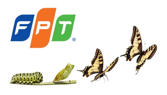 """Sau 29 năm là công ty """"bán buôn-bán lẻ"""", giờ đây FPT mới thực sự trở thành công ty công nghệ nhờ một quyết định nhỏ"""