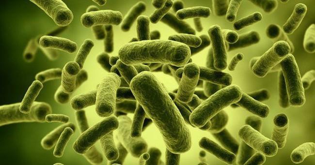 Đừng tưởng toilet là nơi bẩn nhất, những thứ 'tưởng sạch' này cũng nhung nhúc vi khuẩn!