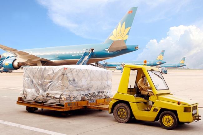Noibai Cargo (NCT) chốt quyền nhận cổ tức bằng tiền tỷ lệ 40%