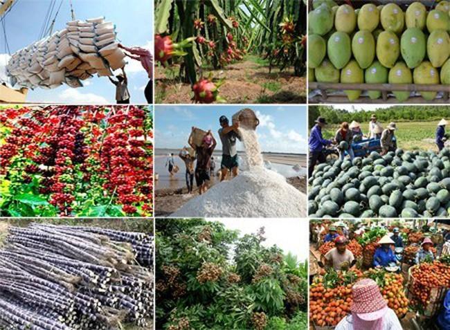 Gia tăng năng lực cạnh tranh cho nông sản xuất khẩu
