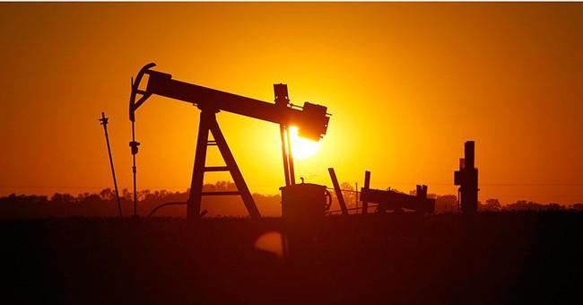 Giá dầu xuôi dốc khi sản lượng Mỹ đạt đỉnh 2 năm