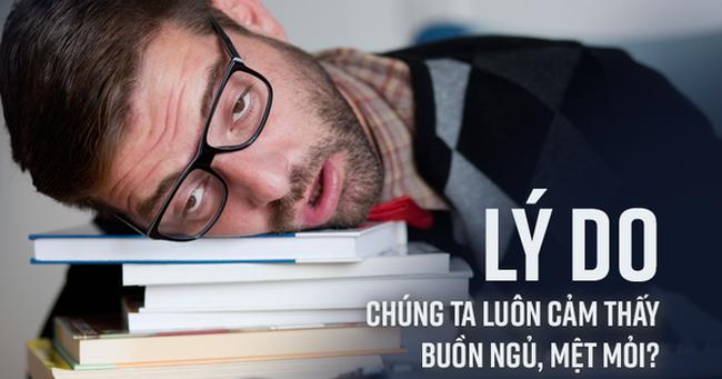Bạn thường xuyên cảm thấy buồn ngủ, mệt mỏi: Đây có thể là những nguyên nhân cần biết