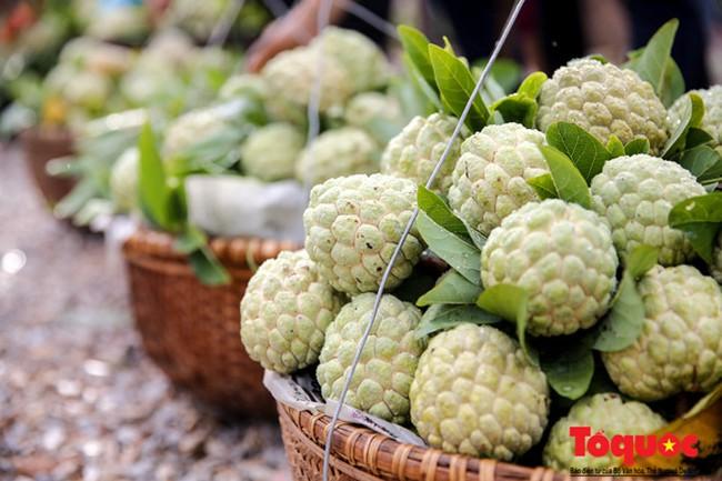 Lạng Sơn: Nhộn nhịp chợ na lớn nhất nước vào mùa