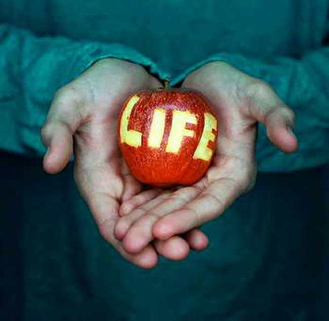 """Luôn nhớ 18 quy luật """"sống còn"""" để kiểm soát cuộc sống của chính bạn"""