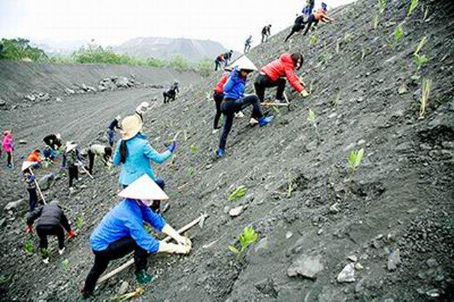 Phí thẩm định phục hồi môi trường cao nhất là 61 triệu đồng