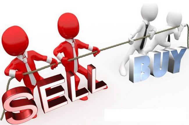 HSG, DXG, CII, VLC, AAA, DIG, MIG, VPB, FMC,AMS, LSS, EFI, TLT, ATB: Thông tin giao dịch lượng lớn cổ phiếu