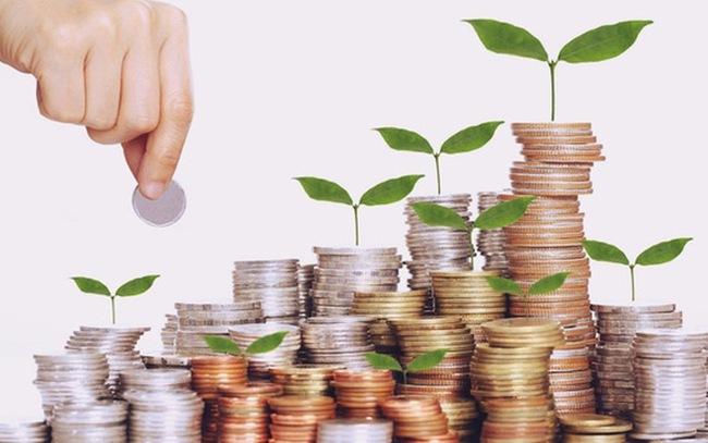 MWG, HQC, QCG, FTM, OPC, CAD: Thông tin giao dịch lượng lớn cổ phiếu