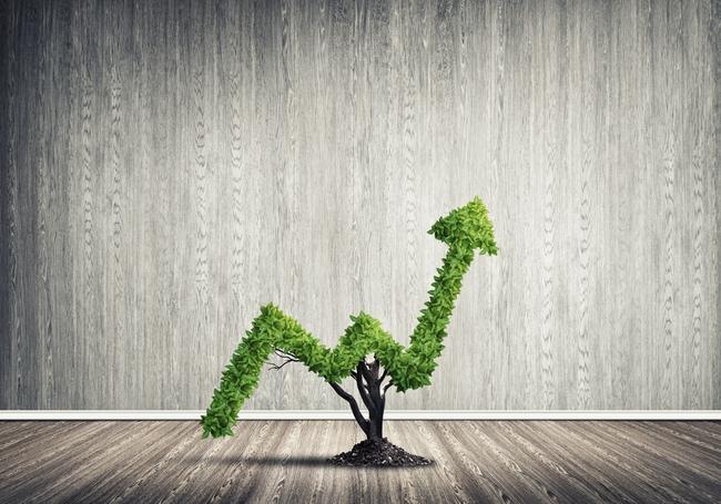 Liên tục thoái vốn tại nhiều doanh nghiệp, PYN đang chuẩn bị tiền cho thương vụ lớn?