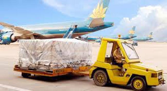 Lợi nhuận của Nội Bài Cargo tăng trưởng trở lại