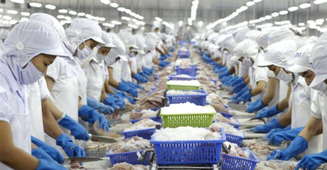 Thận trọng khi xuất khẩu hàng thủy sản sang Algeria