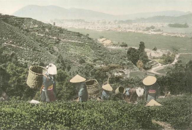 """Những hình ảnh hiếm về """"làng chài"""" Tokyo trước khi là thành phố lớn nhất thế giới"""