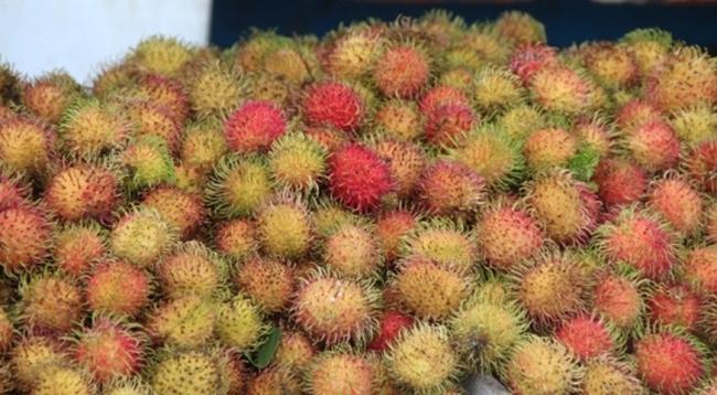 Nắng nóng: Trái cây hút hàng, tăng giá mạnh