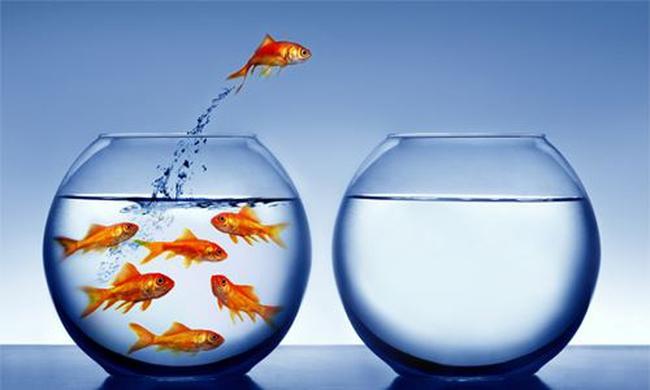 CTCK nhận định thị trường 30/10: Cơ hội rất nhiều nhưng không chia đều cho tất cả