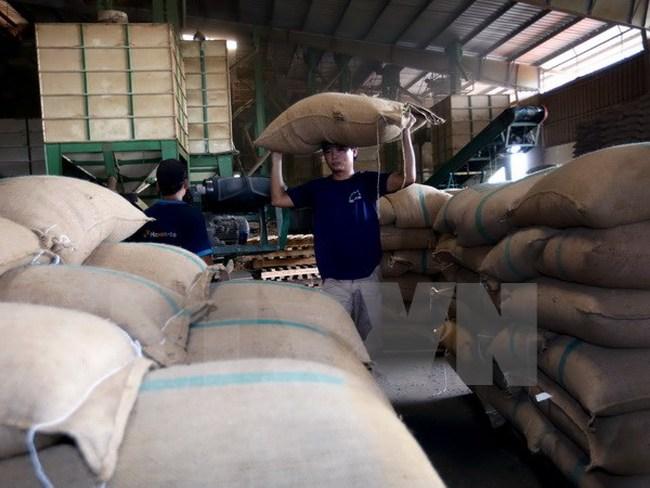 Xuất khẩu nông lâm thủy sản tháng 1/2017 ước đạt 2,54 tỷ USD