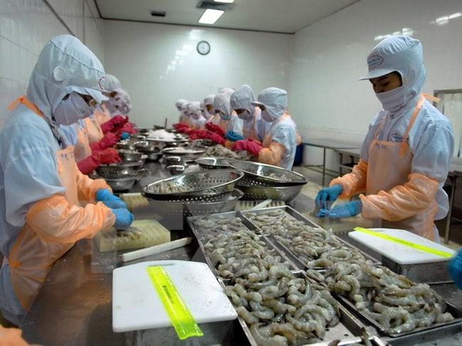 Sản phẩm tôm Việt Nam thắng lớn tại thị trường châu Âu