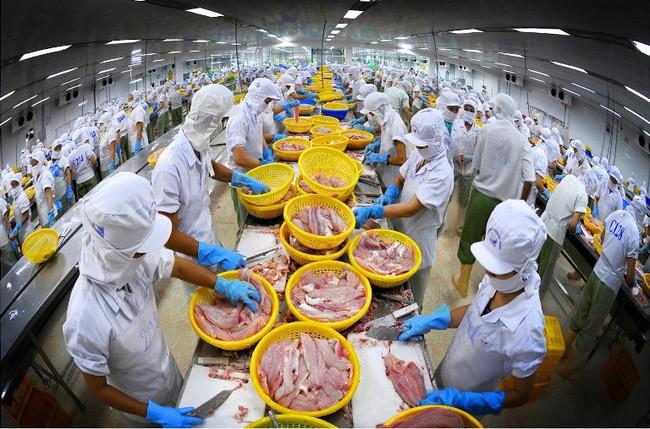 Vĩnh Hoàn (VHC): Doanh thu xuất khẩu tháng 10 đạt 31,7 triệu USD, gấp rưỡi cùng kỳ