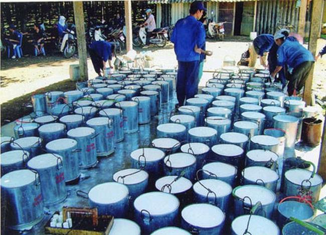 Đầu tư Cao Su Quảng Nam (VHG): Quý 2 lỗ 71 tỷ đồng - cao nhất kể từ khi niêm yết