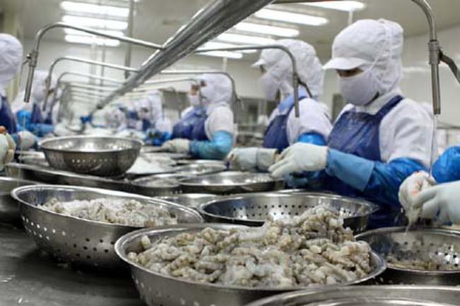 Sao Ta (FMC) chốt danh sách cổ đông nhận 30% cổ tức bằng tiền, Hùng Vương nhận gần 49 tỷ đồng