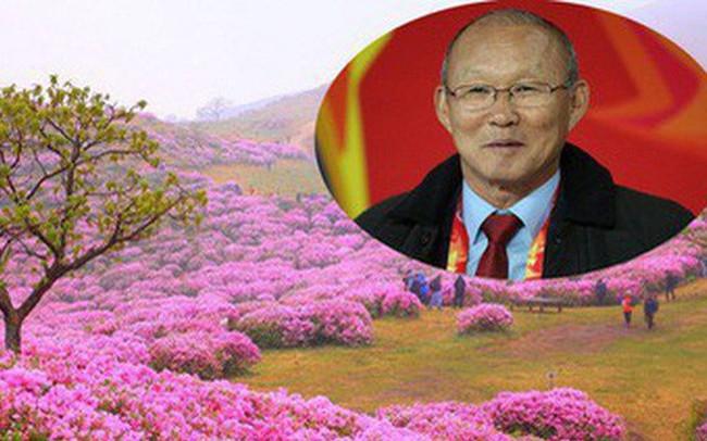 Thì ra vị HLV đáng kính của U23 Việt Nam Park Hang Seo từng sinh ra và lớn lên ở một vùng quê đẹp và yên bình đến vậy