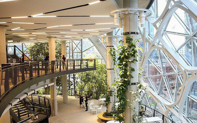 """Bên trong văn phòng """"hình cầu pha lê"""" 4 tỷ USD của Amazon"""