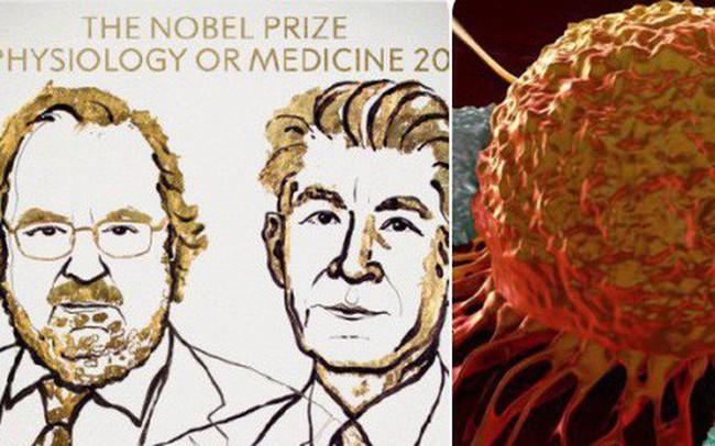 Đột phá điều trị ung thư giành giải Nobel Y học 2018, nhưng cụ thể đó là gì?