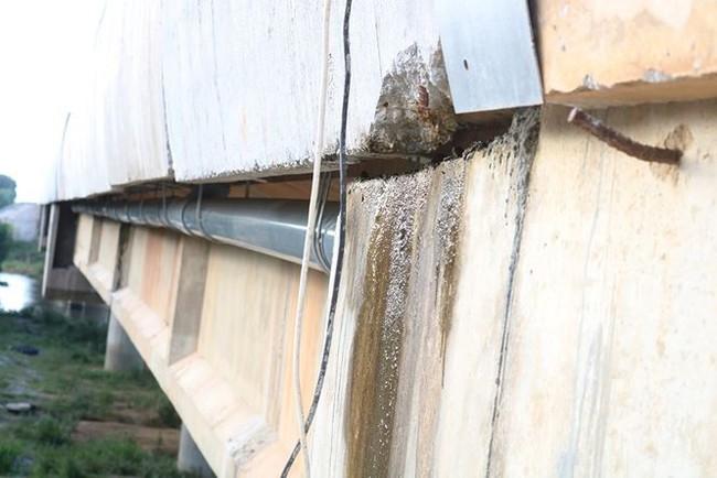 Xuất hiện thêm nhiều cầu thấm dột trên cao tốc Đà Nẵng - Quảng Ngãi