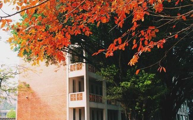 Cận cảnh vẻ đẹp lãng mạn của ĐH Quốc gia Hà Nội - Ngôi trường chiếm vị trí cao nhất ĐH Việt trong 2 BXH uy tín thế giới gần đây