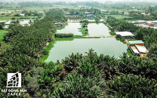 TPHCM: Xử lý nghiêm việc xây dựng không phép trên đất nông nghiệp tại huyện Bình Chánh