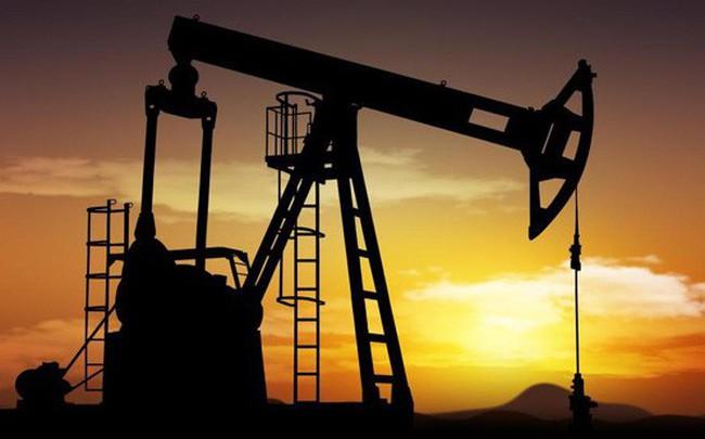 Giá dầu trượt dốc thảm hại vì thừa nguồn cung, Goldman Sachs cảnh báo khủng hoảng thiếu trong những năm 2020