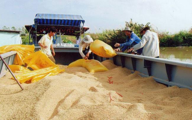 Bộ Công thương mời 22 doanh nghiệp Trung Quốc mua gạo Việt Nam