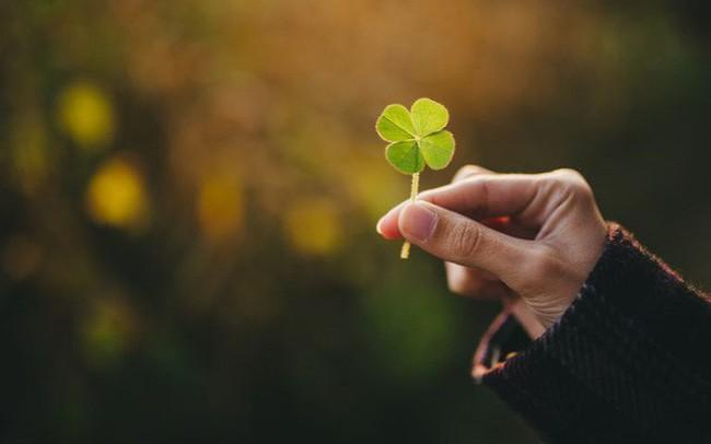 6 bí quyết đơn giản, quan trọng là chẳng hề tốn kém, có thể mang lại hạnh phúc cho cuộc sống của bạn