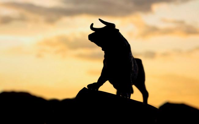 Thanh khoản thị trường suy yếu, Vn-Index tăng nhẹ nhờ nỗ lực của nhóm Bluechips