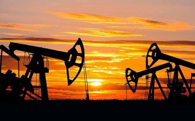Dầu trượt giá thảm hại, OPEC vội vã họp sớm nhưng cắt giảm sản lượng là bài toán khó