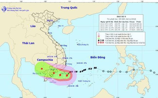 Bão số 9 giật cấp 12 cách đảo Phú Quý khoảng 100 km