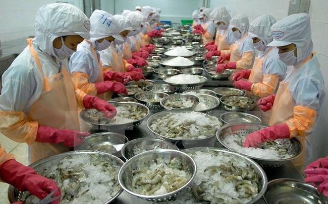 Xuất khẩu tôm sang nhiều thị trường lớn đều giảm mạnh