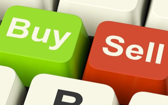 DIG, VNM, FPT, BWE, TMS, STK, DNM, L61, L63, PVM, DCI, AMS: Thông tin giao dịch lượng lớn cổ phiếu