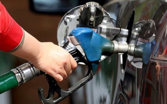 Qatar tuyên bố rút khỏi OPEC vào ngày 1/1/2019