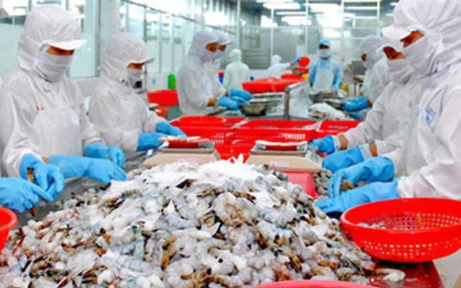 Xuất khẩu tôm sang thị trường Bỉ tăng mạnh