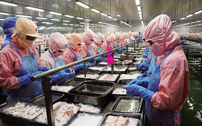 Vua tôm Minh Phú trở lại, báo lãi hơn 714 tỷ đồng năm 2017