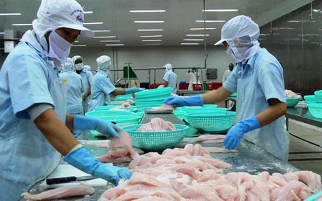 Xuất khẩu cá tra sang thị trường Anh tăng mạnh - ảnh 1